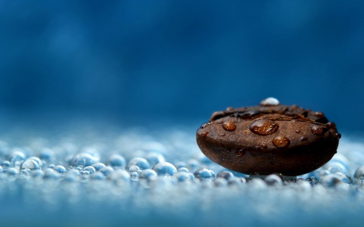 Exigências de Chuva para o cultivo do Café